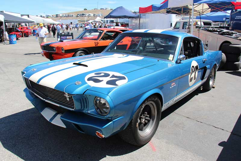 66 Shelby Mustang Muscle Car